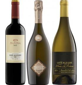 Assortiment de 3 bouteilles notées 90+ par le guide Parker des vins
