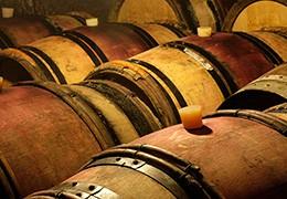 La fabrication du vin - vinification